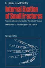Internal Fixation of Small Fractures