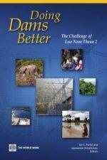 Doing A Dam Better