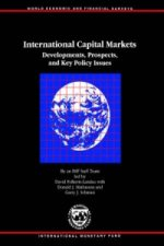 International Capital Markets