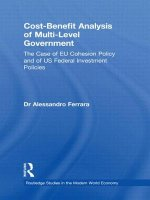 Cost-benefit Analysis of Multi-level Government