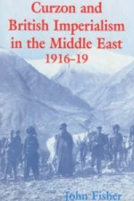 Curzon and British Imperialism in the Middle East, 1916-19
