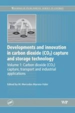 Developments and Innovation in Carbon Dioxide (CO2) Capture and Storage Technology, Volume One