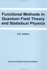 Functional Methods in Quantum Field Theory and Statistical Physics