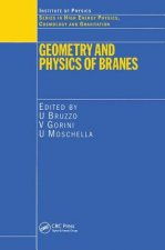 Geometry and Physics of Branes