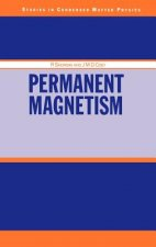 Permanent Magnetism