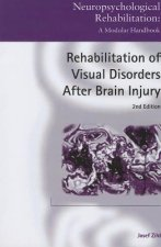 Rehabilitation of Visual Disorders After Brain Injury