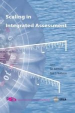 Scaling in Integrated Assessment