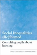 Social Inequalities (Re)formed