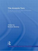 Analytic Turn