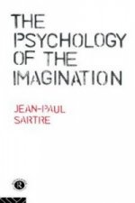 Psychology of the Imagination