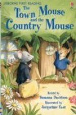 TOWN MOUSE THE COUNTRY MOUSE