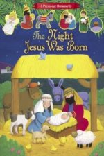 Night Jesus was Born