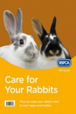 Care for Your Rabbit
