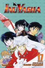 Inuyasha, Vol. 17 (VIZBIG Edition)