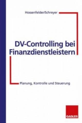 DV-Controlling Bbi Finanzdienstleistern