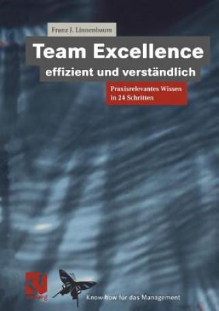 Team Excellence Effizient und Verstandlich