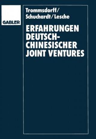 Erfahrungenglish Deutsch-Chinesischer Joint Venglishtures