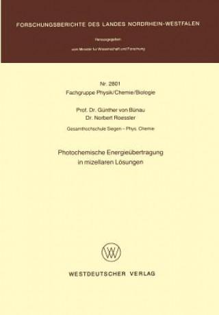 Photochemische Energieubertragung in Mizellaren Losungen