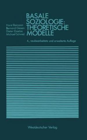 Basale Soziologie: Theoretische Modelle