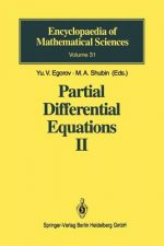 Elements of the Modern Theory of Partial Differential Equations