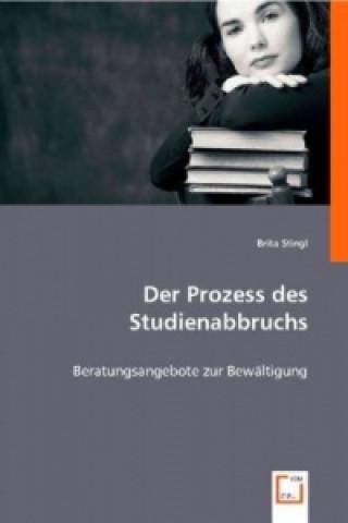 Der Prozess des Studienabbruchs