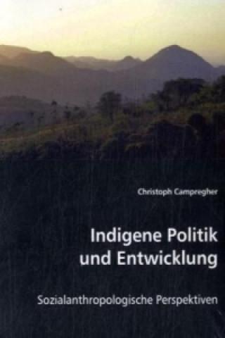 Indigene Politik und Entwicklung
