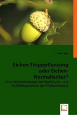 Eichen-Trupppflanzung oder Eichen-Normalkultur?