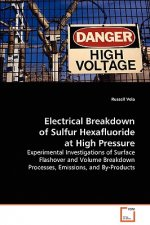 Electrical Breakdown of Sulfur Hexafluoride at High Pressure