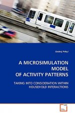 Microsimulation Model of Activity Patterns