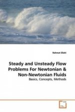 Steady and Unsteady Flow Problems For Newtonian
