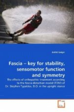 Fascia   key for stability, sensomotor function and symmetry