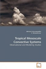 Tropical Mesoscale Convective Systems