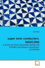 super ionic conductors. NASICONS