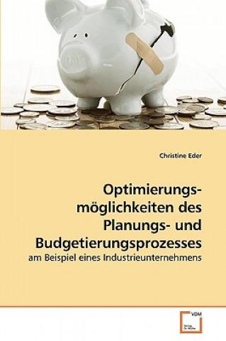 Optimierungs- Moglichkeiten Des Planungs- Und Budgetierungsprozesses