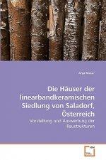 Hauser der linearbandkeramischen Siedlung von Saladorf, OEsterreich