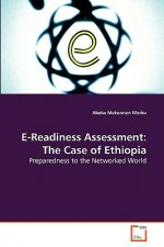 E-Readiness Assessment: The Case of Ethiopia