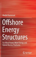 Offshore Energy Structures