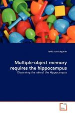 Multiple-object memory requires the hippocampus