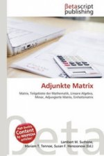 Adjunkte Matrix