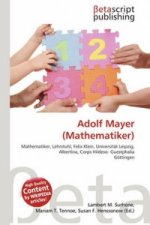 Adolf Mayer (Mathematiker)
