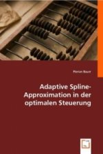 Adaptive Spline-Approximation in der optimalen Steuerung