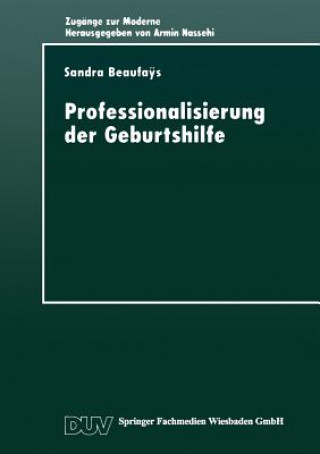Professionalisierung Der Geburtshilfe