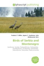 Birds of Serbia and Montenegro