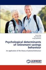Psychological determinants of retirement savings behaviour