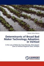 Determinants of Broad Bad Maker Technology Adoption in Vertisol