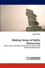 Making Sense of Baltic Democracy