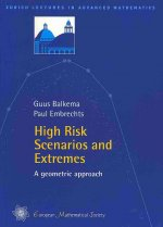 High Risk Scenarios and Extremes