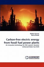Carbon-free electric energy from fossil fuel power plants