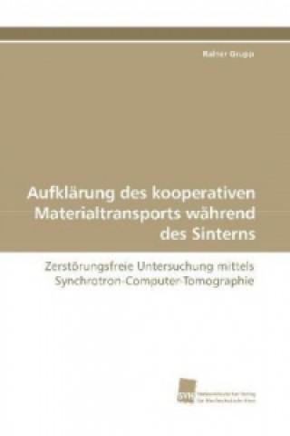 Aufklärung des kooperativen Materialtransports während des Sinterns
