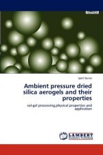 Ambient pressure dried silica aerogels and their properties